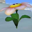 Flor en SSBM.jpg