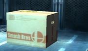 Caja de cartón SSBB.jpg