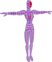 Pose T Fighting Wire Frame Female (SSBM).png