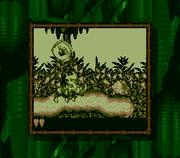 Donkey Kong en Donkey Kong Land.png