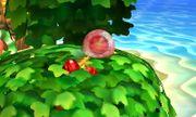 Bomba Gooey SSB4 (3DS).JPG