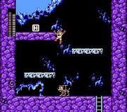 Mega Man y Rush en Mega Man 3.jpg