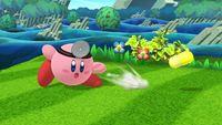 Dr. Mario-Kirby 2 SSB4 (Wii U).jpg