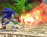 Sonic usando la Flor de fuego SSBB.jpg