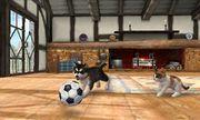 Un perro y un gato jugando en la Casa rural en Nintendogs + Cats.jpg