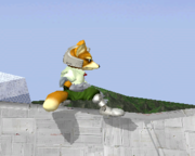 Burla Fox (1) SSBM.png