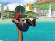 Indefensión Mario SSBB.jpg