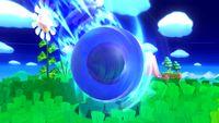 Sonic-Kirby 2 SSB4 (Wii U).jpg