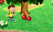 Cereza (Animal Crossing) SSB4 (3DS).png