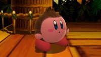 Donkey Kong-Kirby 1 SSB4 (Wii U).jpg