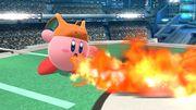 Charizard-Kirby SSB4 2 (Wii U).jpg