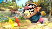 Wario usando Dentellada contra Olimar en el Vergel de la Esperanza SSB4 (Wii U).jpg