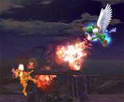 Super Dragón SSBB (3).jpg