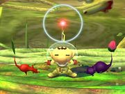 Ataque Smash inferior Olimar SSBB.jpg