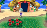 Isla Tórtimer en Animal Crossing New Leaf.png