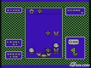 Yoshi game.jpg