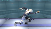 Agarre normal Sheik SSBB (1).png