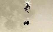 Tecnica floral ninja (7) SSB4 (3DS).png