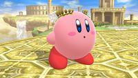 Pit-Kirby 1 SSB4 (Wii U).jpg