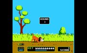Duck Hunt (NES).jpg