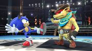 Dillon junto a Sonic SSB4 (Wii U).jpg