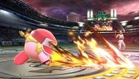 Terry-Kirby 2 SSBU.jpg