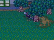 Aldeano talando un arbol en Animal Crossing City Folk.JPG