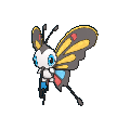 Beautifly XY hembra.png