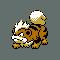 Imagen de Growlithe variocolor en Pokémon Plata