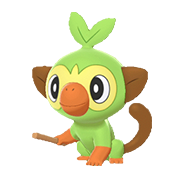 Imagen de Grookey en Pokémon Espada y Pokémon Escudo