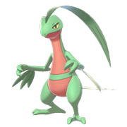 Grovyle EpEc.png