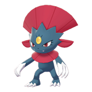 Weavile EpEc hembra.png