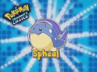 ¡Spheal!