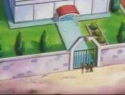 EP237 Gimnasio Pokémon de Pueblo Caoba.jpg