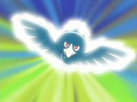 Murkrow usando ataque aéreo.