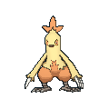 Combusken XY hembra.png