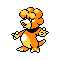 Imagen de Magby variocolor en Pokémon Plata