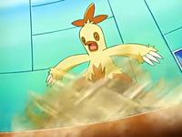 ... Cuando el Combusken de May/Aura se da cuenta, está sumergido en una trampa de arena...