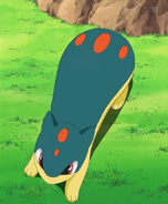 EP651 Quilava.png