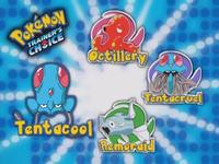 ¿Cuál de estos Pokémon evoluciona Tentacool?
