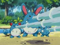 Marill, Azumarill y Azurill usando pistola agua.