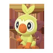 Imagen de Grookey variocolor en Pokémon Espada y Pokémon Escudo