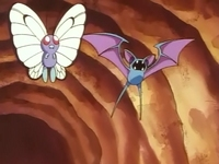 EP006 Butterfree y Zubat.jpg