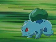 Bulbasaur usando Placaje.