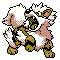 Imagen de Arcanine variocolor en Pokémon Plata