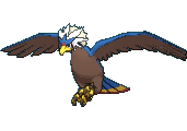 Braviary XY variocolor.png