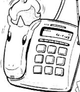 PMS047 Teléfono de Ponyta.png