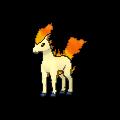 Ponyta XY.png