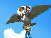 Kellyn/Primo rescatando a Ash volando sobre Staraptor