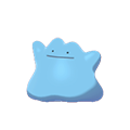 Ditto EpEc variocolor.png